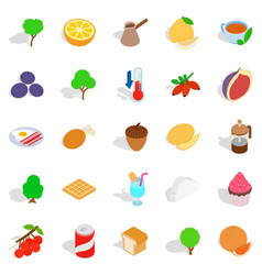 Street vegan cafe icons set isometric style vector