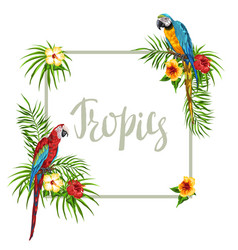 Tropical frame with parrots vector