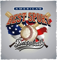 Baseball americas sport vector