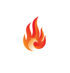 Flame phoenix logo vector