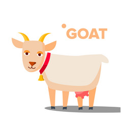 goat funny animal isolated flat cartoon vector image