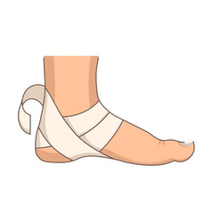 heel bandage foot injury or stretching first aid vector image