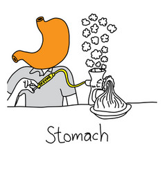 Metaphor function of stomach to secrete acid and vector