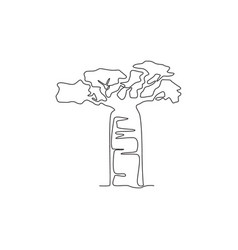 single one line drawing beauty and exotic vector image
