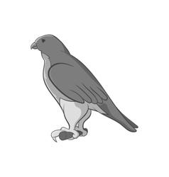 Falcon icon black monochrome style vector