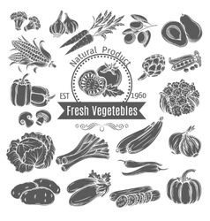 Monochrome vegetables icons vector image vector image