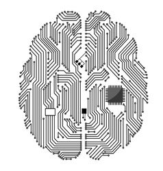 Motherboard brain vector image