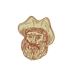 Pirate Head Beard Drawing vector image vector image