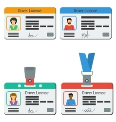Four colored drivers license vector image