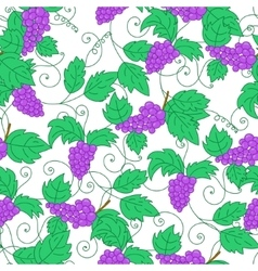 Hand drawn grapes seamless pattern background vector