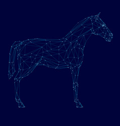 polygonal horse wireframe made blue lines on a vector image