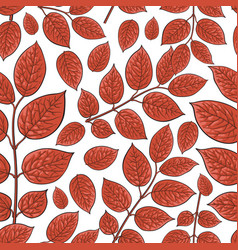 Seamless pattern of birch honeysuckle red leaves vector