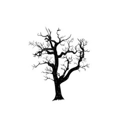 the dry old tree is terrible vector image
