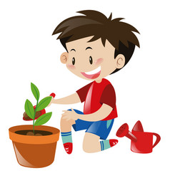boy planting tree in flower pot vector image