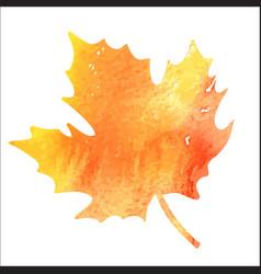 Bright orange watercolor autumn maple leaf vector