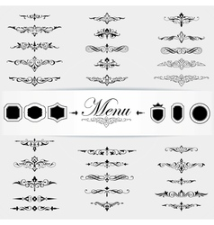 Calligraphy design elements page decoration vector
