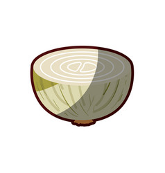 light colors of middle onion in closeup with thick vector image