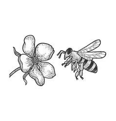 bee flies to flower sketch vector image