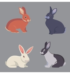Cartoon rabbits different vector