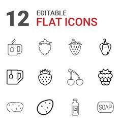 freshness icons vector image