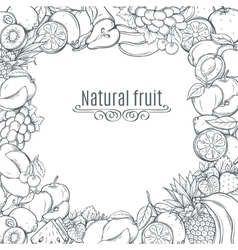 Fruits hand drawn frame vector