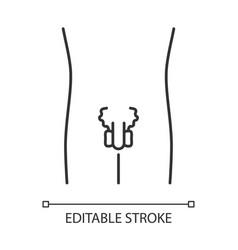 ill men reproductive system linear icon sore vector image