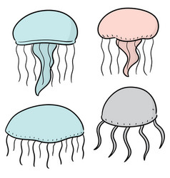 set of jellyfish vector image