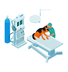 Veterinary surgery room composition vector