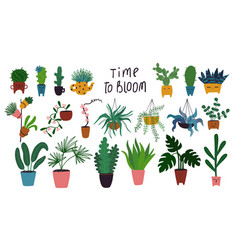 with different indoor plants vector image