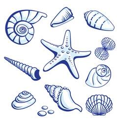 starfishes cockleshells set vector image vector image