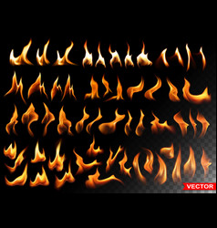 Realistic burning fire flames bright elements vector