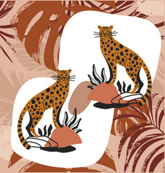 set of cute leopards standing on rocks in boho vector image