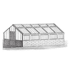 Span roofed orchard house vintage vector