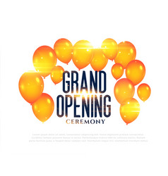 stylish grand opening balloons background vector image