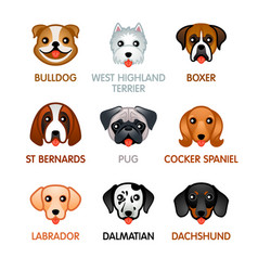 Cute dog icons set i vector