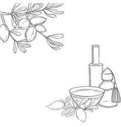 Argan oil background sketch vector