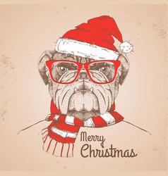 christmas hipster fashion animal bulldog vector image