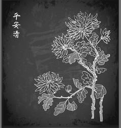 Chrysanthemum flowers in oriental style on vector