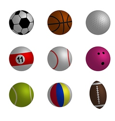 collection sport ball vector image