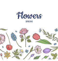 hand drawn flowers background banner poster vector image