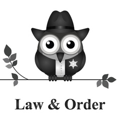 Law and Order USA vector image