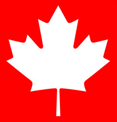 canada maple icon vector image