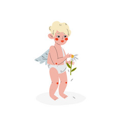 Cute funny cupid guessing at camomile amur baby vector
