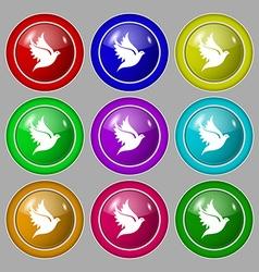 Dove icon sign symbol on nine round colourful vector image