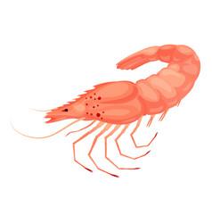 shrimp icon cartoon style vector image