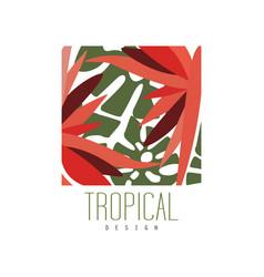tropical logo template design square badge vector image