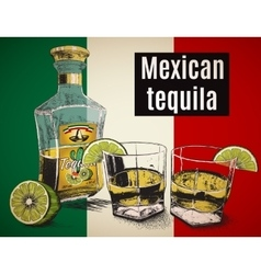 Two stemware tequila with bootle vector
