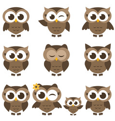 set of brown owls and owlets isolated on white vector image vector image
