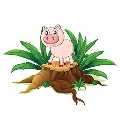 A pig above a trunk vector image vector image