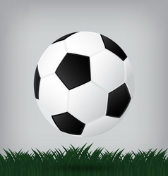 Best soccer football isolated background vector